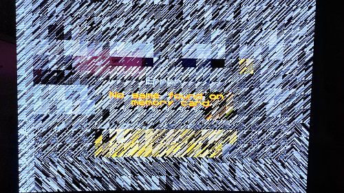 P_20201123_114046